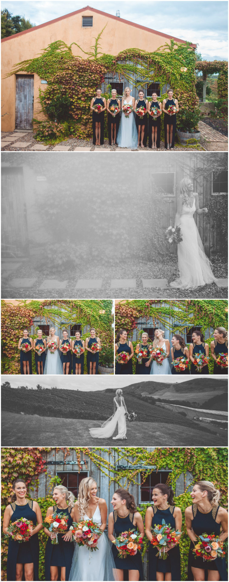 waiheke wedding photographer_017
