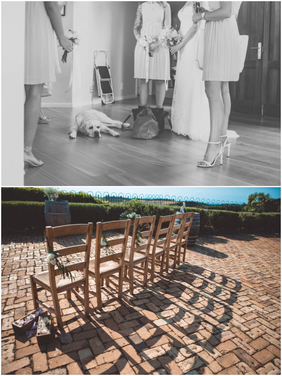 waiheke wedding photographer_018